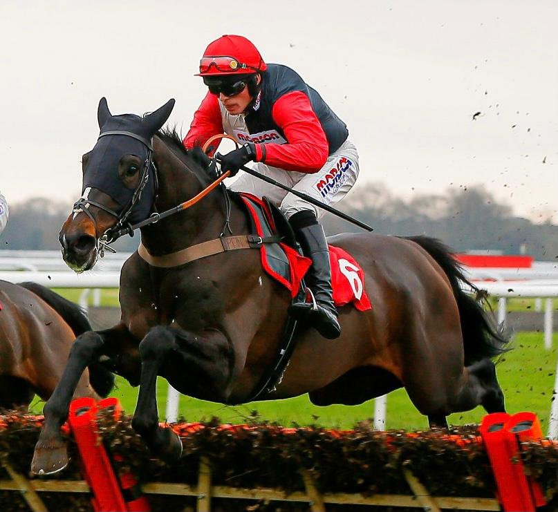 Harry Cobden five to follow, Thyme White pictured