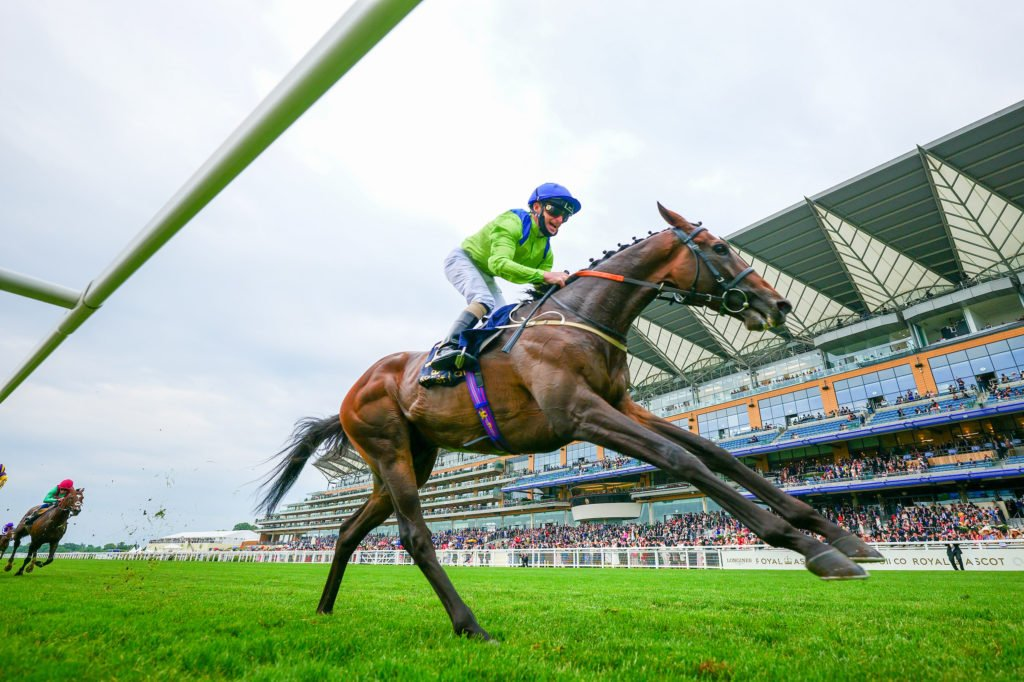 Subjectivist -Joe Fanning wins from the field The Gold Cup at Royal Ascot 2021